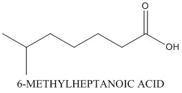 CAS 929-10-2 6-METHYLHEPTANOIC ACID